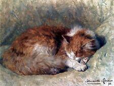 Art SLEEPING CAT Henriëtte Ronner-Knip Ceramic Mural Backsplash Bath Tile #2401