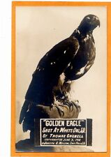 Real Photo Postcard RPPC - Taxidermy Golden Eagle Shot at White Owl SD 1910