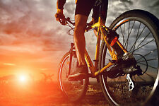 STUNNING MOUNTAIN BIKE CYCLING CANVAS #3 WALL HANGING A1 PICTURE ART HOME DECOR
