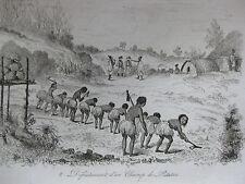 1834 Voyage autour du monde de M. d'Urville Nouvelle-Zélande 3 gravures