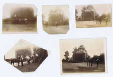 KEMPSEY Worcestershire Hay Making near the Town - 5xAntique Photos c1910
