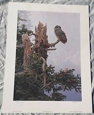 TERRY A ISAAC On The Precipice - Spotted Owl Signed Numbered Print Art 217/950