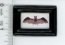 Dollhouse Miniature Art - Black Framed Picture of a Vintage Look Flying Bat