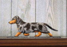 Dachshund Smooth Dog Figurine Sign Plaque Display Wall Decoration Blue Dapple