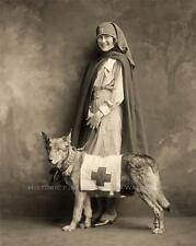 ‪‪RED CROSS NURSE RESCUE DOG VINTAGE PHOTO DISASTER RELIEF WORLD WAR ONE  #21242