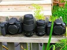 EXCLUSIVE PRO BUNDLE: Canon 60D 18.0 MP and Canon T3. (4 LENSES). Freeshipping!