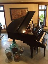 """Baby Grand Piano Schafer&Sons 5'1"""" Mint Condition"""