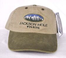 *JACKSON HOLE WYOMING* Skiing Sowboarding Ball cap hat *OURAY* longer bill