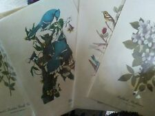 Art Posters 12 X 9 Birds Flowers Set of 5 Pictures FLOWERS BIRDS unframed