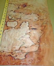 "Pepperwood Pimento Burl wood veneer 13"" x 20"" raw no backing 1/42"" thickness"