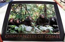 1998 Chimpanzees of Gombe Jane Goodall Institute for Wildlife Research Poster