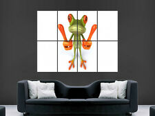 FROG POSTER 3D FUNNY  LARGE  WALL PICTURE  GIANT HUGE ART