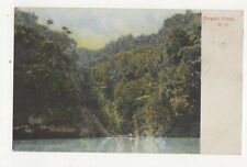 Mangaio Creek New Zealand 1911 Postcard  262a