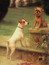 BRUSSELS GRIFFON & FOX TERRIER CHARMING DOG GREETINGS NOTE CARD DOGS IN GARDEN