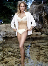 PHOTO JAMES BOND 007 CONTRE DR NO - URSULA ANDRESS /11X15 CM #2