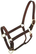 Tough 1 brown leather Churchill stable halter w/snap horse tack equine 44-2031