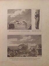 PARTE della SFINGE ANTICA CANOPO EGITTO acquaforte 1817 Cooke Rovine Aboukir
