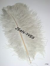 """10 SILVER OSTRICH FEATHERS 10-12""""L"""