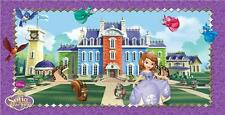 Sofia The First Birthday - Sofia The First Party Scene Setter 150 x 77cm