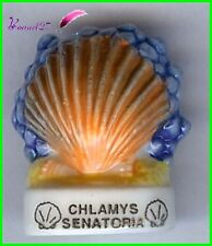 "Feve Les coquillages Shell Edition Atlas "" Le Chlamys Senatoria "" #C59"
