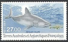 FSAT/TAAF 1998 Porbeagle Shark/Sharks/Marine/Nature/Wildlife/Fish 1v (n33549)