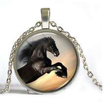 HOT Vintage Horse Cabochon Silver plated Glass Chain Pendant Necklace #4