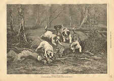 Hunting Dogs Kill A Deer, Stag, Vintage 1878 French Antique Art Print