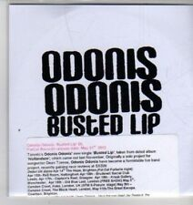 (CX105) Odonis Odonis, Busted Lip - 2012 DJ CD