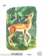 CARD BON POINT Gazelle Gazella Gacela Gazzelle INDE INDIA 60s