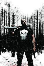 Punisher MAX, Vol. 4 (v. 4) Garth Ennis Hardcover