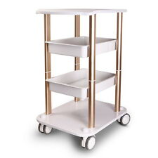New Two Shelf ABS Pedestal Rolling Cart Salon Trolley Styling Spa Salon Cart OT