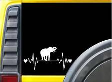 Elephant Lifeline Sticker k919 8 inch rescue decal