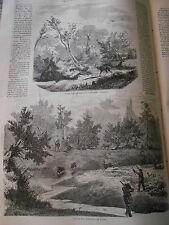 N°921 - Chasse à Chevreuil à l'appeau et en Battue  1860