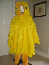 DUCK HALLOWEEN BIRD COSTUME HANDCRAFTED HOMEMADE