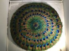 Magnifique très grand circulaire natural peacock feather fan