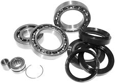 YAMAHA YFB 250FW TIMBERWOLF 1994 1995  REAR DIFFERENTIAL BEARING AND SEAL KIT