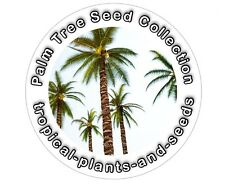 Ultimate Palmera Colección - 10 Variedades - 100 fresca Tropical Seeds Set De Regalo