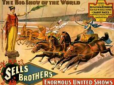 ADVERTISING CIRCUS SELLS BROTHERS CHARIOT HORSE ART POSTER PRINT LV620
