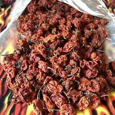 2016 ORGANIC AUSTRALIAN DRIED CAROLINA REAPER PEPPERS 12 PODS WORLDS HOTTEST