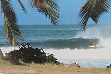 pour tableau surf Lot triptyque photo de Cazenave à encadrer décoration marine