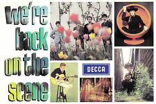 Various 'WE'RE BACK ON THE SCENE' Promo. Postcard New - UK Decca