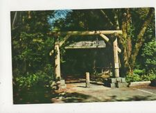 Gateway To Muir Woods National Monument San Francisco USA Old Postcard 457a