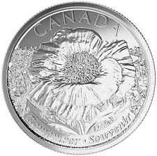 2015 Remembrance Poppy Quarters Canadian Coins **1 Non-Coloured Only** IN HAND