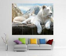 WHITE LION MOUNTAIN GIANT WALL ART PRINT POSTER H38