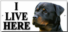 "ROTTWEILER ""I LIVE HERE"" METAL SIGN,SECURITY,WARNING.PERSONALISED.DOG BREEDS."