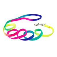 "48"" Colorful Durable Nylon Dog Puppy Cat Walking Leashes Leads For Small Dogs"
