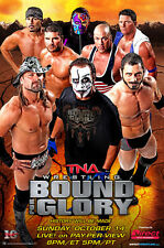 Official TNA Impact Wrestling 38 x 24 inch Bound For Glory 2012 PPV Poster