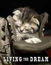 Cat Motivational Poster Art Print Kitten Toys House Vet Living the Dream MVP528