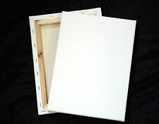 """8"""" x 10"""" Blank Medium Surface Primed Stretched Value Artist Canvas 2 Pack"""