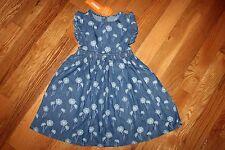 NWT Gymboree Pocketful of Sunshine 3T Blue Chambray Dandelion Dress